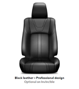 Black Leather Professional Design